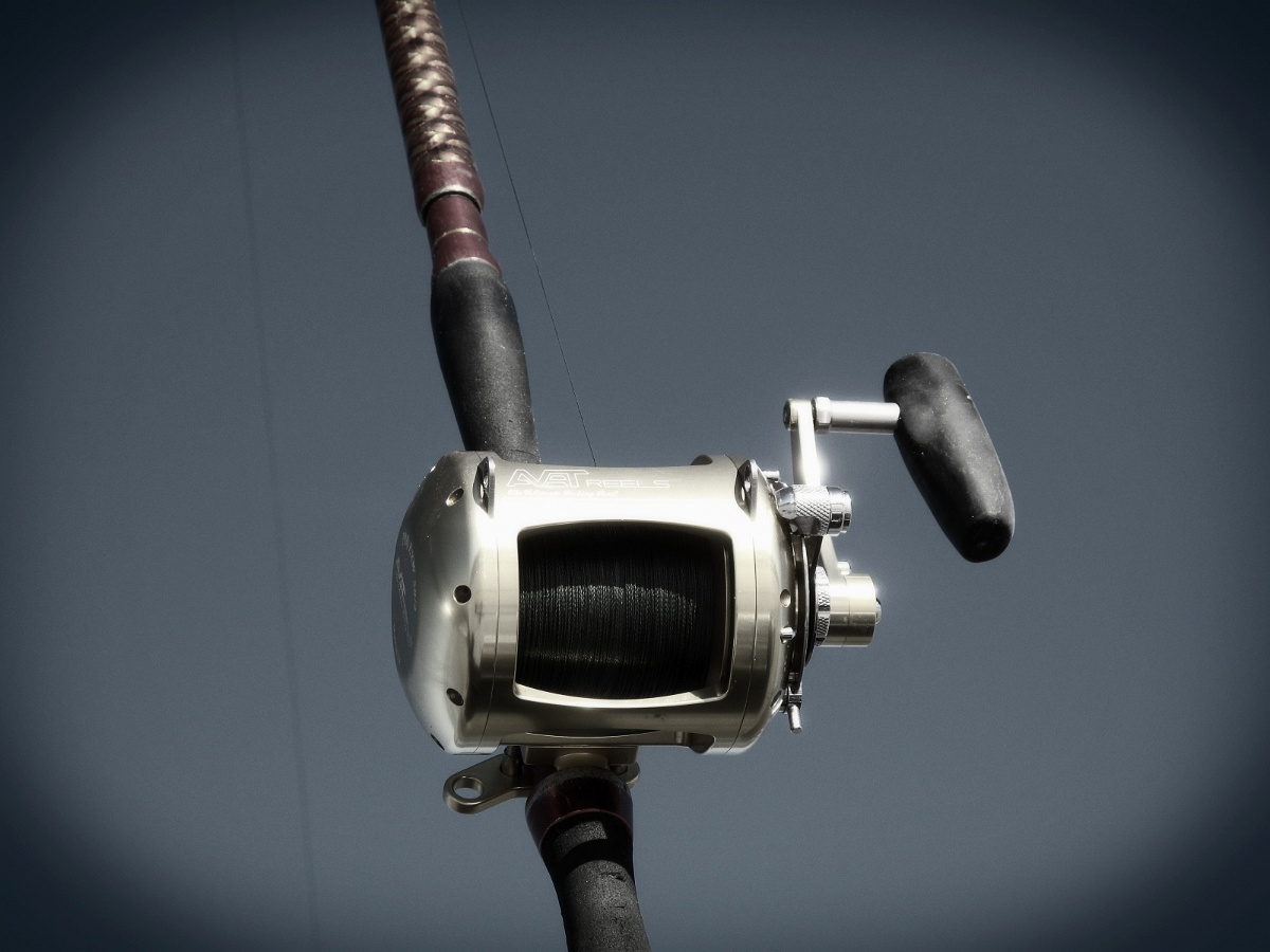 Surf fishing rods reels truck for Fishing rods and reels